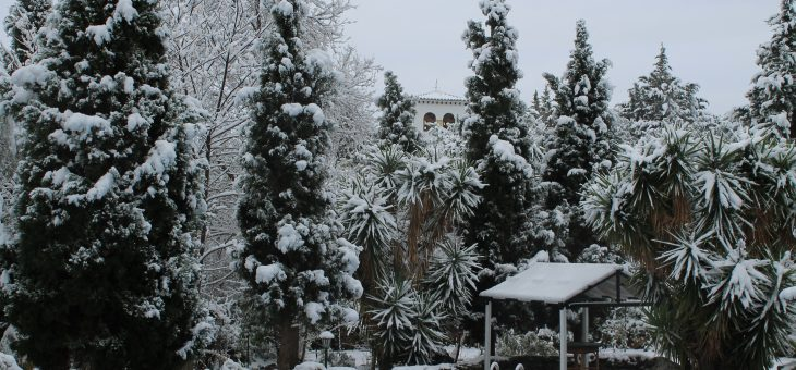 A Spanish Winter Wonderland
