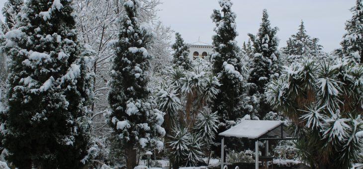 Navidad en plena Naturaleza