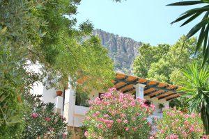 jardin-casa-romantica