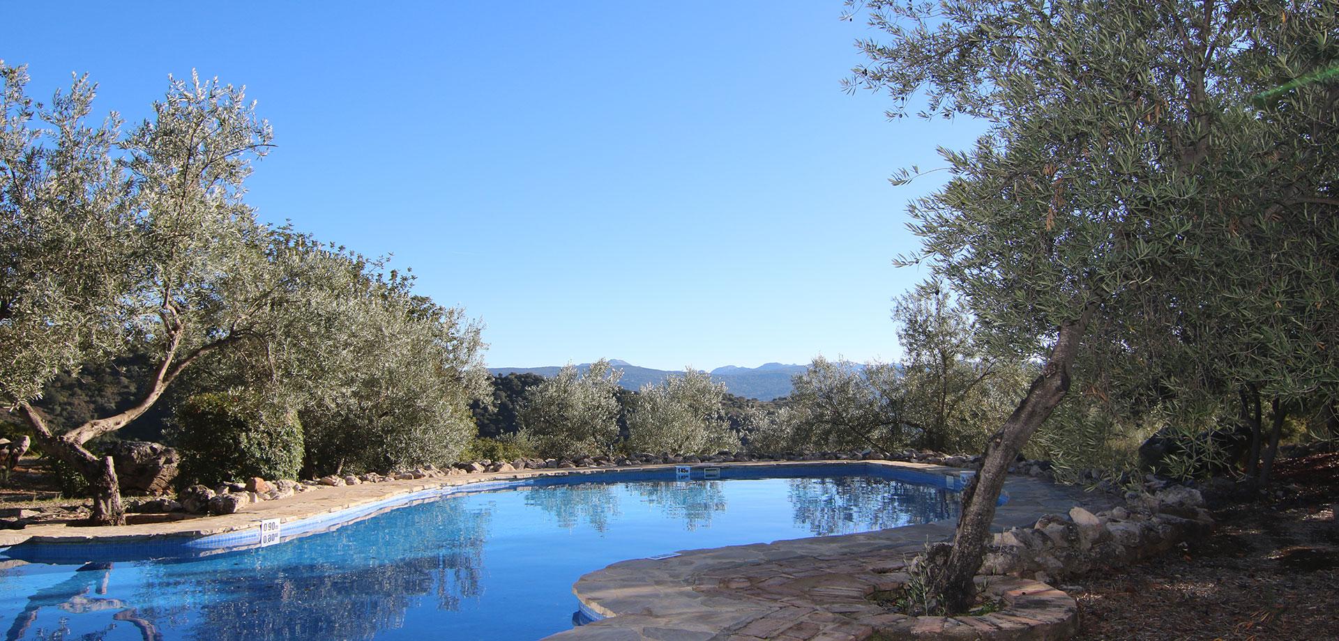 casa con piscina paronamica